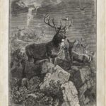 Dalziel after Joseph Wolf, 'The Exiles of Oona', illustration for Robert Buchanan, North Coast and other Poems