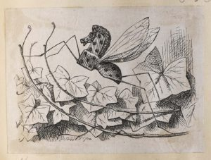 Dalziel after John Tenniel, illustration for 'Looking-glass insects', in Lewis Carroll [Charles Lutwidge Dodgson], Through the Looking-Glass, and What Alice Found There
