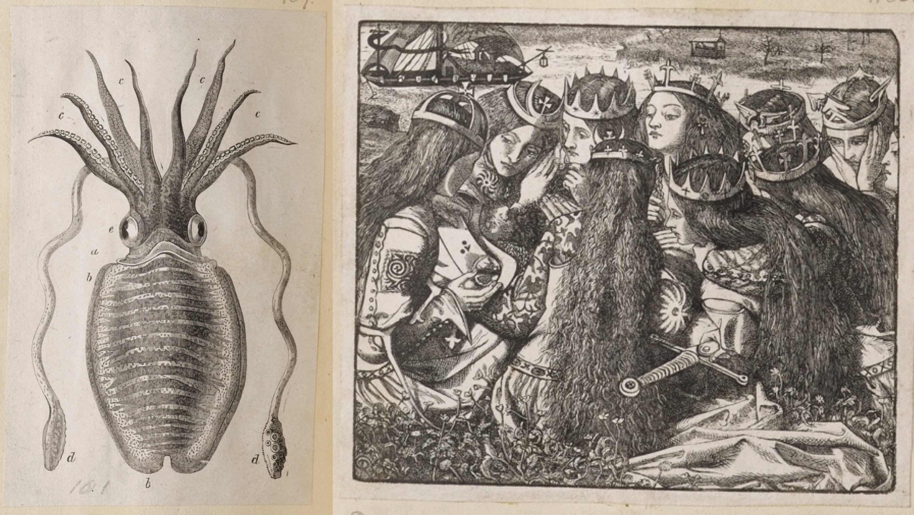 Mollusc and Rossetti illustrations, Dalziel