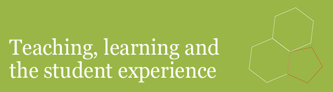 University of bedfordshire student experience strategy