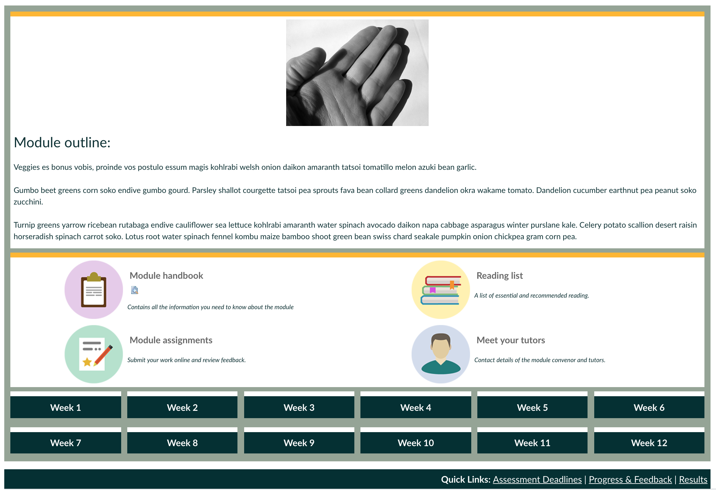 Social work preview image