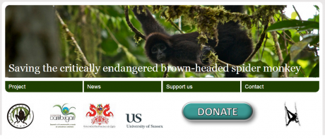 Spider Monkey Conservation Website