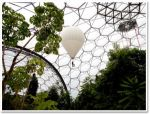 Eden project balloon