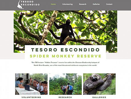 Image of Tesoro Reserve Website