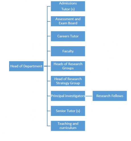 Graphic depicting generic departmental structure