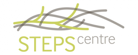 STEPS Centre logo