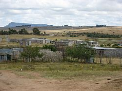 Besotho trees and urban houses 2007
