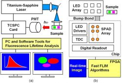 a Lab FLIM system and a SPAD-based FLIM system-on-chip