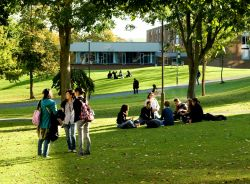 Image of some students sitting under trees - well, what would you use to illustrate this strand of research?