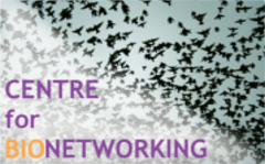 Centre for Bionetworking logo