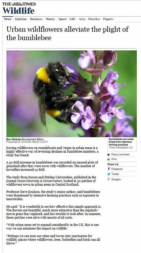 Times article on urban wildflowers