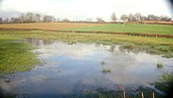 A flooded field near Horsted Keynes