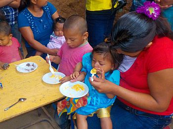 Making sense of micronutrients - Mothers' views from Guatemala and Peru