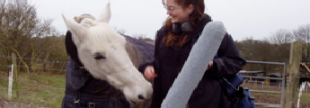A researcher with a horse carrying out work for Mammal Vocal Communication and Cognition Research