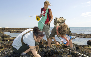 Students document findings on the Sussex coast