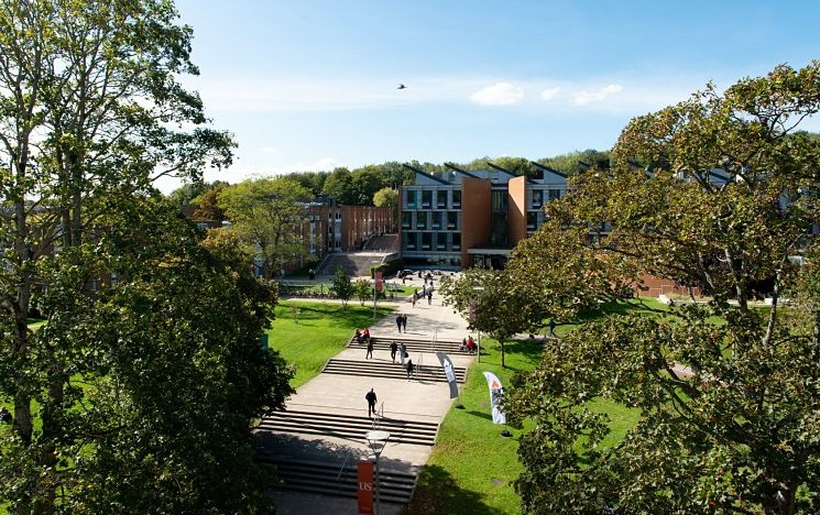 long range shot of green campus on a sunny day