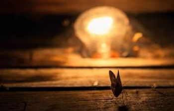 A moth in front of a lit lightbulb in the night.