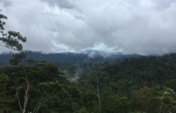 View of transpiration from tropical rainforest at case study site in northeast Peru