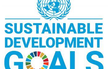 UN Sustainable Development Goals emblem