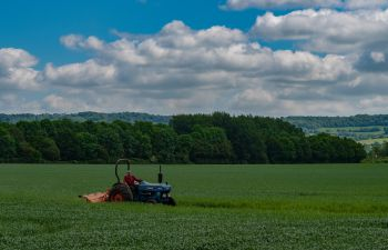 A tractor sits on an old-fashioned tractor in a field of green crops