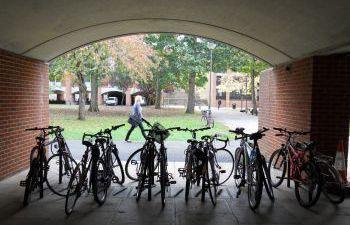 An image of locked-up bicycles at Falmer House