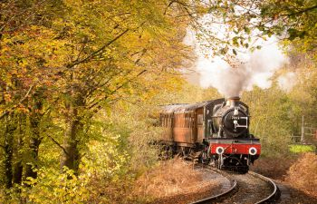 A black and red steam engine pulls wooden carriages through a forest