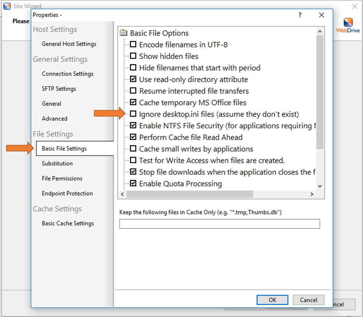 WebDrive Advanced Settings