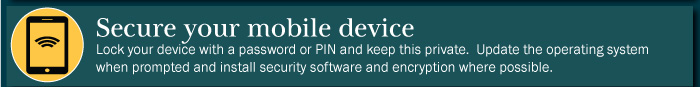 Take steps to secure mobile devices