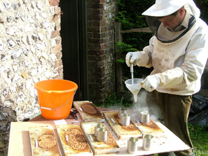 Norman Carreck freezing brood cells to kill bee larvae:
