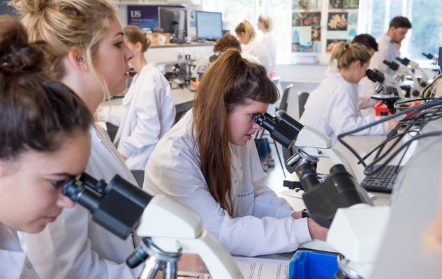 Undergraduate students taking part in lab work at the University of Sussex