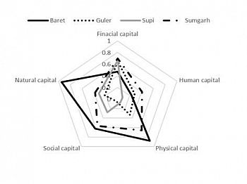 Radar chart showing livelihood diversity, sustainable land management activities and inputs