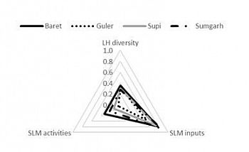 Radar chart showing livelihood capitals in four villages