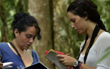 Academics in a forest monitoring wildlife