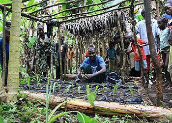 A farmer in Liberia